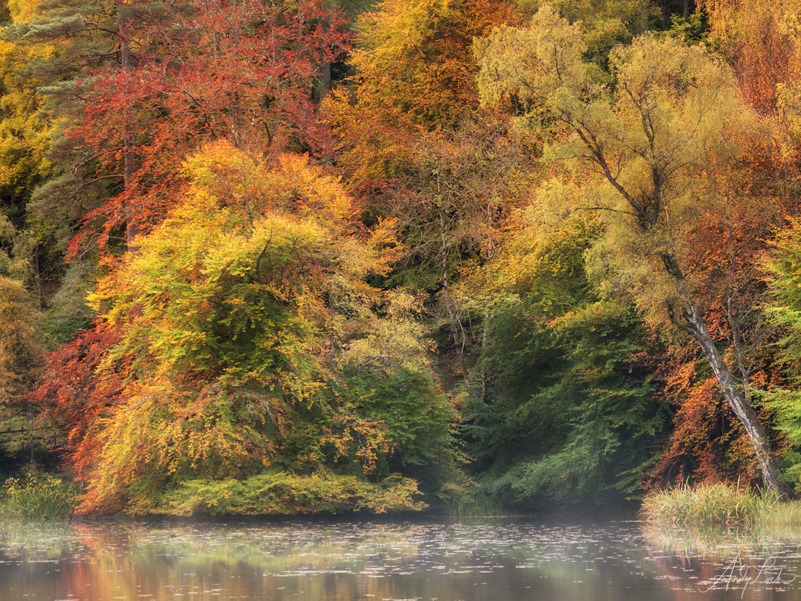 Autumn Colours on Loch Dunmore